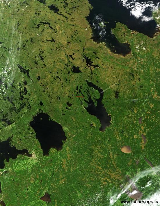 Кондопога на спутниковом снимке России