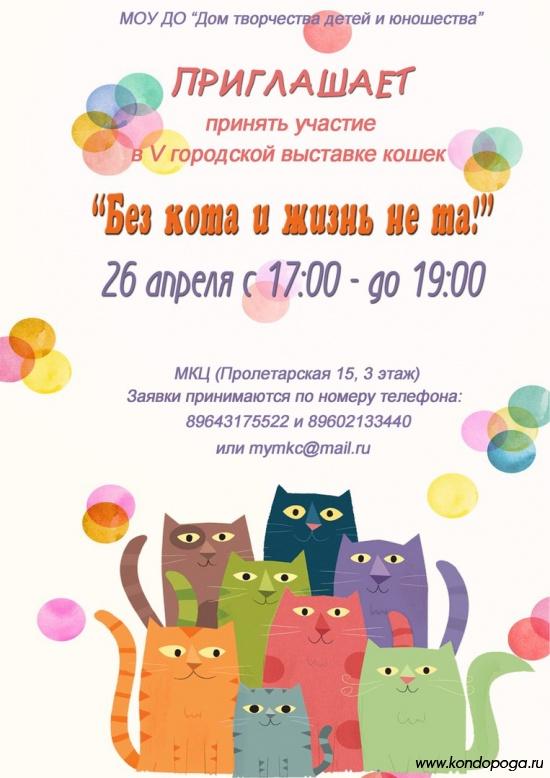 """выставка беспородных кошек """"Без кота и жизнь не та!"""""""